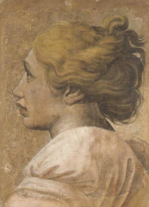 Head of a youth in profile to the left Cartoon for a tapestry