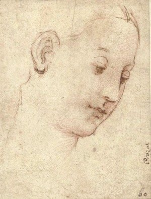 Raphael - Head of the Madonna, in three-quarter profile to the right