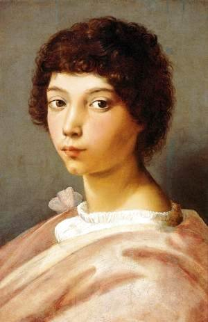 Raphael - Portrait of a Young Man 2