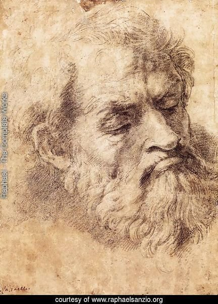 Study of the Head of an Apostle