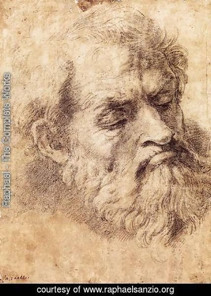 Raphael - Study of the Head of an Apostle