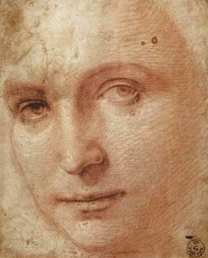 Raphael - Head of a Youth