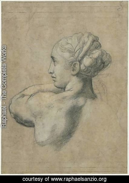 Raphael - Head Of A Woman